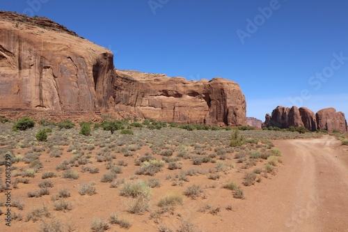 Foto Spatwand Zalm Monument Valley