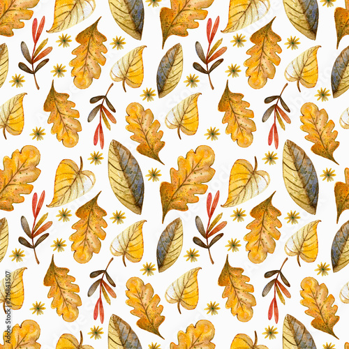 Seamless watercolor pattern on the autumn theme. Watercolor floral background - 216843507