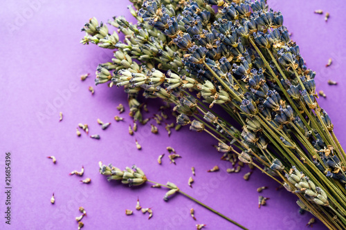 dry lavender on a lilac background, concept