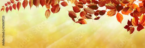 Canvas Oranje Herbst 138