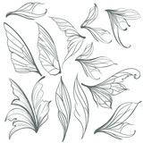 Collection of vector light grey wings for design - 216902552
