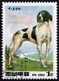 Postage stamp North Korea 1994 Pointer, Breed of Dog - 216904581