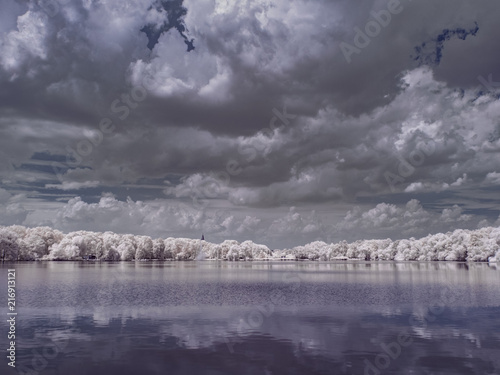 Foto Spatwand Grijs infrared photography - ir photo of landscape with tree under sky with clouds - the art of our world and plants in the infrared camera spectrum