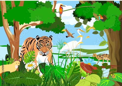Fototapeta Syrdarya river fauna, tiger, pheasant, birds, forest, vector illustration