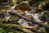 The flowing river between the stones in detail. - 216930729