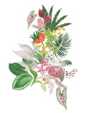 Colorful floral collection with leaves and tropical flowers; drawing watercolor. Design for invitation, wedding or greeting cards - 216932595