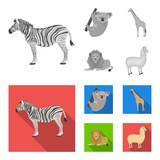 African zebra, animal koala, giraffe, wild predator, lion. Wild animals set collection icons in monochrome,flat style vector symbol stock illustration web.