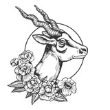 Antelope head animal engraving vector - 216950598