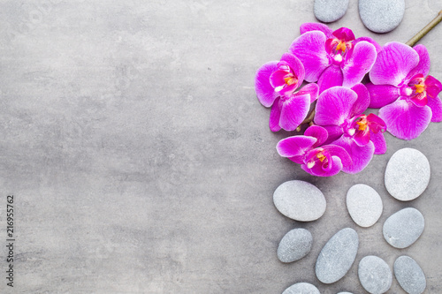 Wall mural Beauty orchid on a gray background. Spa scene.