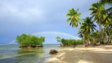 Colorful rainbow over caribbean sea and green palms.Travel background.