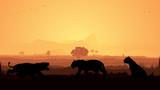 Wild animals silhouette, Tiger family