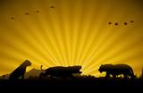 Tiger family, Wild animals silhouette