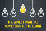 The wisest mind has something yet to learn - 216973938
