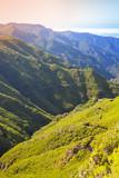 Vertical mountain landscape of Madeira island