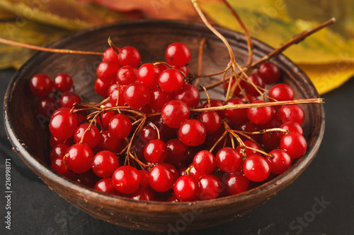 Leinwandbild Motiv Ripe red berries of a viburnum in a plate