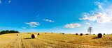 Landscape in summer with hay bales on a field and blue sky with bright sun in the background - 217008550