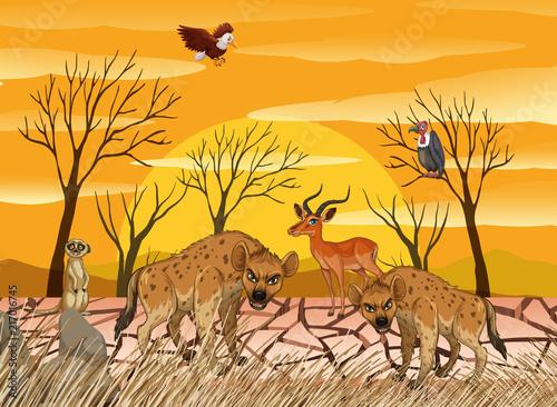 Fotobehang Kids Wild animals living in dry land