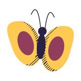 beautiful butterfly design