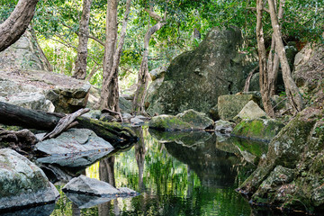 A Small Creek In A National Park In Australia