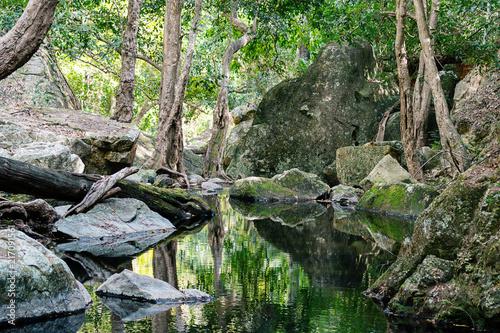 Leinwandbild Motiv A Small Creek In A National Park In Australia