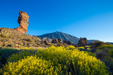 Fototapeta Fototapety góry  - View of unique Roques de Garcia unique rock formation with famous Pico del Teide mountain volcano summit in the background on a sunny morning. Teide National Park, Tenerife, Canary Islands, Spain. © cegli