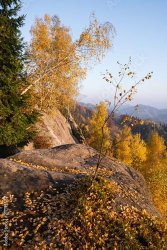 Foto Spatwand Blauwe hemel Autumn Landscape with birch leaves
