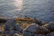 Quadro Saint Malo surroundings