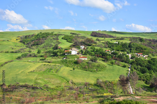 Canvas Pistache Italy, Puglia region, typical hilly landscape in spring