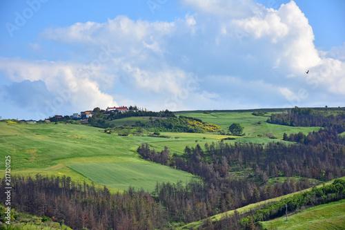 Fotobehang Grijze traf. Italy, Puglia region, typical hilly landscape in spring