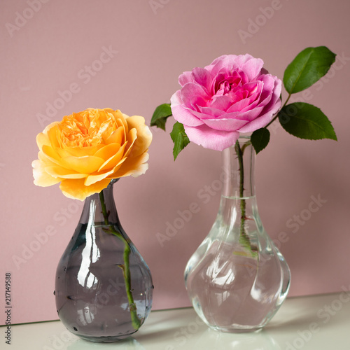 Two Cut Roses Apricot Colored And Hot Pink Colored In Glass