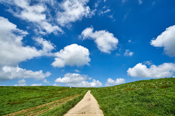 서산 운산목장의 뭉게구름과 초원