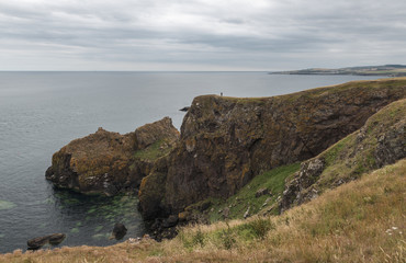 The impressive Sea Cliffs At St Abbs Head on the Scottish border  © Michael Walker