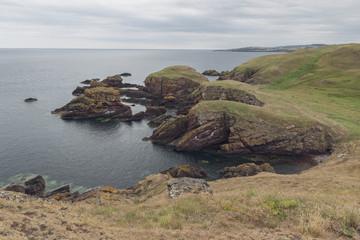 The impressive Sea Cliffs At St Abbs Head on the Scottish border  © Michael Walker
