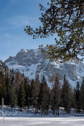 Fotobehang Grijze traf. Dolomites in Italy