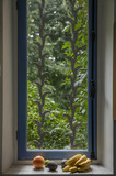 Fruits and kitchen window with garden view
