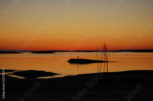 Canvas Zee zonsondergang seagull sunset