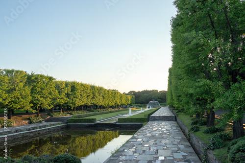 Fotobehang Tokio Showa Memorial Park in Tachikawa-city, Tokyo, Japan
