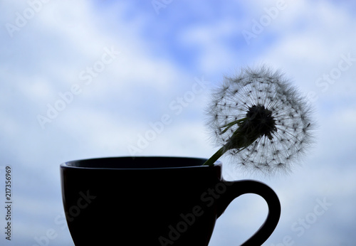 Canvas Paardenbloemen Silhouetted dandelion in a cup against the blue sky