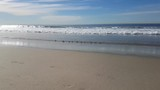 Cute, small birds at calm beach. - 217358351