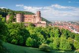Heidelberg mit Schloss und Altstadt im Sommer