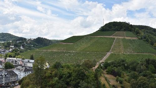 Canvas Wit Winnice w Saarburg