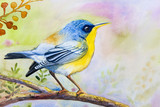 Painting colorful of  alone bird on a branch amidst  beautiful
