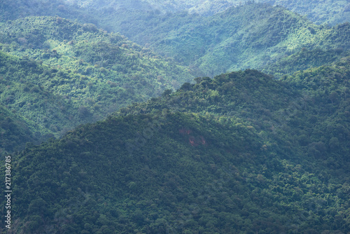 Foto Murales Tropical evergreen forest mountain