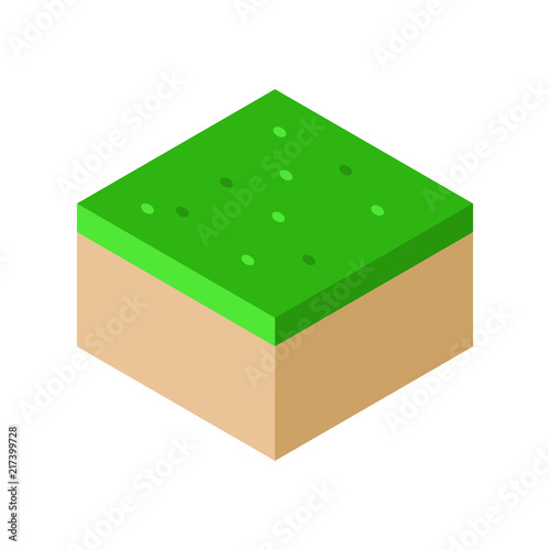 Isometric Landscape Cube Ground Grass vector illustration. concept. Flat style design. Colorful graphics