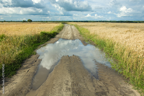 Aluminium Beige Reflection of clouds in a puddle on dirt road through fields