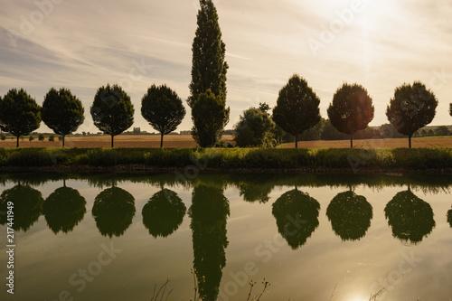 Leinwanddruck Bild Allee am Kanal