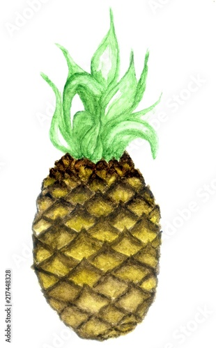 Pineapple abstract art - 217448328