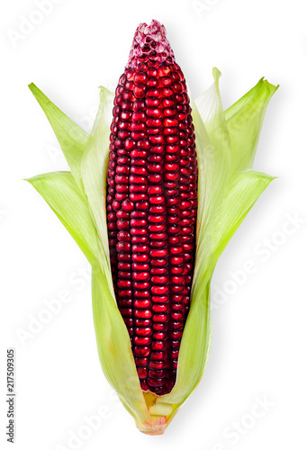 Foto Murales Corn isolated on white with clipping path