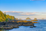 Shoreline at wild pacific trail in Ucluelet, Vancouver Island, BC - 217510771