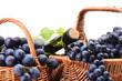 Leinwanddruck Bild - Excellent grape wine, this year's harvest